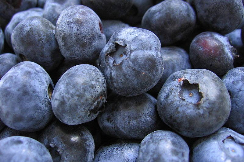 800px-Bunch_of_blueberries