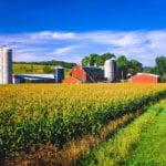 Corn crop and Iowa farm at harvest time