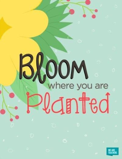 spring_posters_bloom