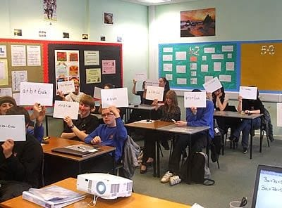 students in the classroom using whiteboards to flash answers