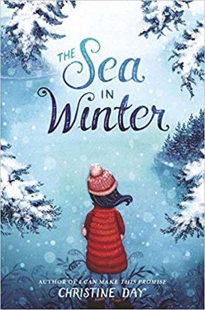 The Sea in Winter book cover
