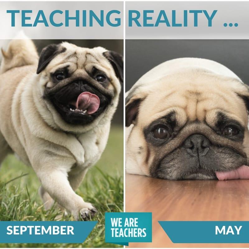 teacher_meme_end_of_year_comparison