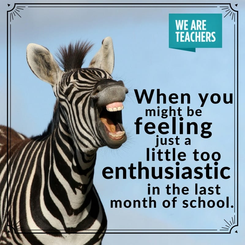 teacher_meme_end_of_year_enthusiastic