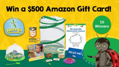 Win a $500 Amazon gift card! Terminix Insect Explorers Giveaway