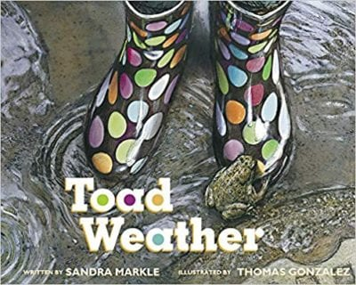 Book cover for Toad Weather example of Spring books for kids