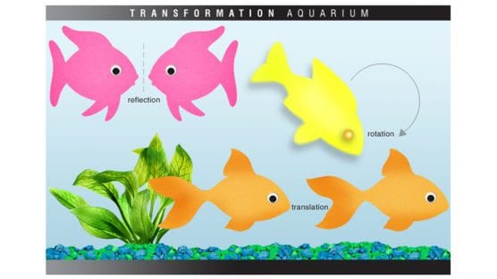 Geometry Transformation Activity: Transformation Aquariums