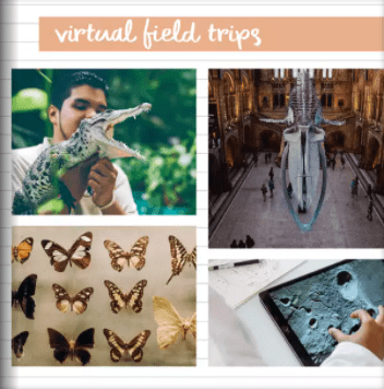 Scrapbook collage of school virtual field trips