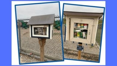 Photograph of two Little Free Libraries