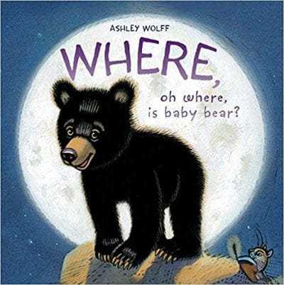 Where Oh Where is Baby Bear Book